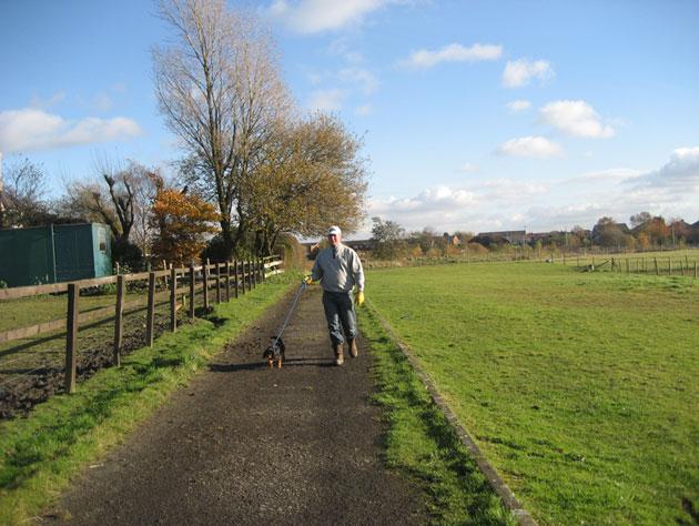 dog_walk1